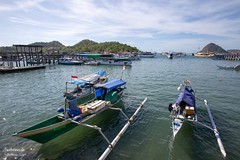 Labuanbajo - Old Fishmarket Harbor (Stefan Beckhusen) Tags: harbor harbour ships boats maritime sea seaside ocean sun sunny travel tourism transport labuanbajo flores indonesia asia holidays recreation relaxation fairweather lifestyle fishermen water color day outdoor outdoors tourismspot tourismlocation touristdestination sightseeing komodotours landscape seascape sky horizon island hills mountains wideangleshot fishmarket chillout bluesky clouds dock quay boattours outriggercanoe outriggerboat