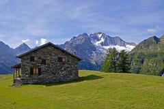 Alpe dell'Oro (giorgiorodano46) Tags: 2015 valmalenco lombardia valtellina italy giorgiorodano 2luglio2015 july alpedelloro luglio2015 montedisgrazia mountain landscape alpi alpes alpen alps