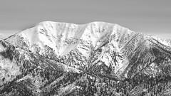 Mt San Antonio (RyanLunaPhotography) Tags: mountain snow socal ngc baldy mt antonio san california gabriel southern xt2 55200mm fuji fujifilm landscape