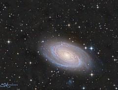 M81 and Integrated Flux Nebula (nicolasstephan) Tags: rgb sho nebuleuse ciel astro newton sbig astronomy telescope universe nebula mono tmb qsi astrodon cosmos constellation deep space dso interstellar nebulae nebulosity orion stars skies sky night mesu mesu200 science bw astronomia m42 m81 ifn
