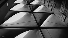 Perspetivas (antoninodias13) Tags: pb luz sombra arquitetura comércio amadora lisboa portugal