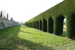 Chippenham Hall Gardens (hedgehoggarden1) Tags: chippenhamhallgardens hedge shadows wall cambridgeshire sonycybershot eastanglia uk sony gardens topiary grass lawn landscape arches viaduct