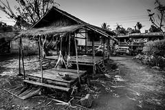 Village, Laos (pas le matin) Tags: bw nb blackandwhite noiretblanc monochrome travel world architecture village lao laos asia asie southeastasia hut house maison hutte pinapple ananas canon 7d canon7d canoneos7d eos7d