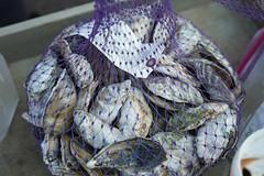 33rd Annual Seafood Bash  19