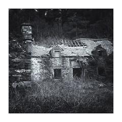 cartref (gerainte1) Tags: hasselblad501 pancro400 film blackandwhite house home cartref woodland wales snowdonia