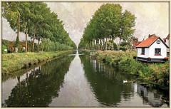 Les canaux de Damme, Damse Vaart-zuid, Belgium (claude lina) Tags: claudelina belgium belgique belgië damme canal arbres trees eau water maison house