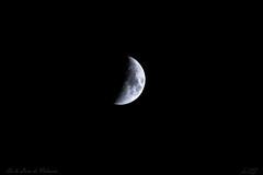 En la Luna de Valencia (Luis JG) Tags: luna moon noche night espacio space satelite satellite cosmos universo universe ef100400mmf4556lisiiiusm canoneos5dmarkiv