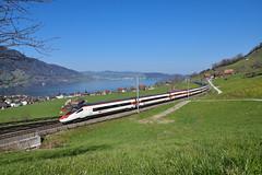 SBB ETR 610 013, Arth (moritzspotter) Tags: sbbcffffs sbbfernverkehr sbbpersonenverkehr eurocity ec15 etr610 rabe503 papero astoro arthgoldau arth zugersee schweiz switzerland