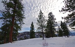 Snow trail (jasbond007) Tags: winter snow okanagan carmi trail penticton britishcolumbia canada pentax k3ii jasbond007 nigeldawson copyrightnigeldawson2019 hdpentaxda★1118mmf28eddcaw