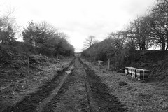 Railway cutting, Thornhill Dewsbury   (former Savile Town branch).  March 2019 (dave_attrill) Tags: cutting disused railway line trackbed saviletown dewsbury branch goods thornhill thornhilllees horbury westyorkshire yorkshire march 2019