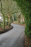 Overhanging trees (Halliwell_Michael ## Offline mostlyl ##) Tags: brighouse westyorkshire nikond40x 2019 priestleygreen trees roads road landscapes lanes