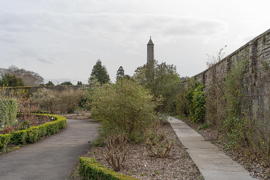 THE BOTANIC GARDENS IN GLASNEVIN DUBLIN [ TODAY I USED A VOIGTLANDER 40mm F1.2 LENS]-150681