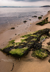 Cramond (Stacy Notman Photography) Tags: cramond edinburgh scotland waterfront seafront seaweed tide canon 600d 1018mm