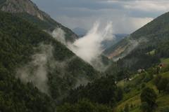 After The Rain (Derbyshire Harrier) Tags: magura zarnestigorge 2018 romania transylvania summer mist naturetrek zarnesti darkskies forest mountains storm moody