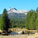 Cathedral Peak from Tuolumne Meadows, Yosemite 10-18