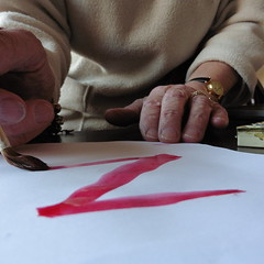 Z is for the Mark of Zorro (amy's antics) Tags: z zed zee zorro paint red hands