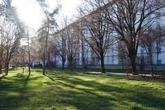 Parc de la Colline @ Quartier de Novel @ Annecy (*_*) Tags: winter hiver 2019 march afternoon europe france hautesavoie 74 annecy annecylevieux savoie novel