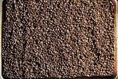 DSC_9458-61 (jjldickinson) Tags: nikond3300 107d3300 nikon1855mmf3556gvriiafsdxnikkor promaster52mmdigitalhdprotectionfilter coffee coffeebean roasting timor longbeach wrigley
