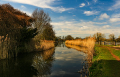 Reflections (WorcesterBarry) Tags: lovecolour reflections landscape nature places reeds sky outdoors canal fields water england worcester