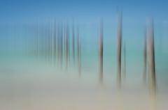Bridport Pier ICM (K-tography) Tags: tasmania australia bridport pier water icm panning motionblur blur sony sonyalpha