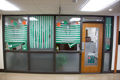 Homecoming Window Displays-21