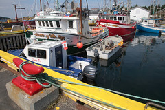 Heart's Content Harbour (peterkelly) Tags: digital canon 6d northamerica canada newfoundlandlabrador heartscontent harbor harbour boat ship fishing yellow red encarnado dock rope trawler horncleat outboard motor