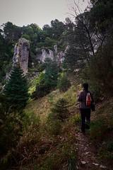 El bosque me llama (Francisco Godoy Aguilar) Tags: bosque llamada senderismo hiker call saucillo yunquera malaga asdenn spain españa andalucia camino pinsapo
