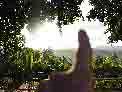 . (hn.) Tags: cu cub caribbean groseantillen holguinprovince karibik mayari republicadecuba republik backlight contraluz copyright copyrighted countryside cuba gegenlicht heiconeumeyer kuba ländlich provinciadeholguin rural tp201901cuba