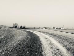 Iph8211 (gzammarchi) Tags: italia paesaggio natura pianura campagna ravenna sanmarco strada sterrato casa bn