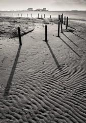 Shadows (dietmargötte) Tags: monochrom shadows spo pfahlbauten schwarzweis architecture strand landschaft landscape bnwplanet travelphotography bnwgreatshots nature canon bnw beach seescape schleswigholstein germany northsee nordsee sanktpeterording