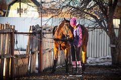 Алиса обнимается с лошадкой / Alice is hugging a horse 2019 (jose6210) Tags: horse horses hagging hag обнимашки любовь лошадь лошади horseriding ride конюшня девушка girl flickrgirl