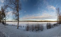 Z19_1314-Pano LT (Zoran Babich) Tags: lapland lappi suomi finland winter snow landscape