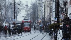 Istambul in winter (Miradortigre) Tags: sultanahmet street calle snow istambul estambul turquia turkey ciudad city snowfall nevada citylife istanbul