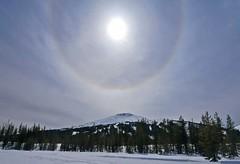tl1140905BachelorSundogThreeQtr (thom52) Tags: thom central oregon bend dutchman flat todd lake snow snowshoe snowshoeing