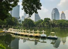 люмпини-парк-lumpini-park-bangkok-9082