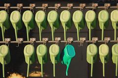 Unconventional (Giovanni Piero Pellegrini) Tags: color colour colors colours green blue unconventional nonconformist different genuine special