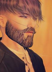 ᴏʀᴀɴɢᴇ (ѕєαи) Tags: secondlife sl beard modulus s0ng