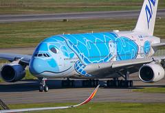 JA381A Airbus A380 All Nippon (@Eurospot) Tags: ja381a airbus a380 ana allnippon toulouse blagnac