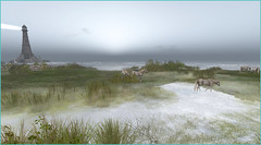 zénitude (Tim Deschanel) Tags: tim deschanel sl second life exploration landscape paysage horse cheval chevaux animal brume endless haraiki bay