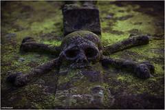 memento mori II (geka_photo) Tags: gekaphoto flensburg schleswigholstein deutschland grab totenkopf grün