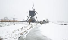 Winter Wonderland  -  Kinderdijk (Wim Boon Fotografie) Tags: kinderdijk koud wimzilver wimboon winter winterlicht ice canoneos5dmarkiii canonef1635mmf4lisusm holland netherlands cold sneeuw sneeuwinkinderdijk