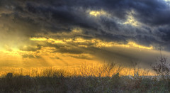 Storm on the horizon (ArtGordon1) Tags: ethereal london england uk winter sunset february 2019 davegordon davidgordon daveartgordon davidagordon daveagordon artgordon1 clouds