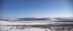sweep and curve (Redheadwondering) Tags: sonyα7ii salisburyplain wiltshire winter snow landscape sigma sigma2470lens striplynchets waterdeanbottom