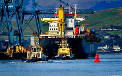 Scotland Greenock tugs CMS Warrior and Anglegarth and container ship MSC Jenny 11 February 2019 by Anne MacKay (Anne MacKay images of interest & wonder) Tags: scotland greenock dock docks boat boats tug tugs cms warrior anglegarth container ship msc jenny 11 february 2019 picture by anne mackay