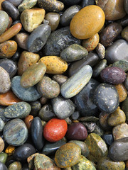 Rocks on the beach (moonjazz) Tags: rocks color stones beach coast california red collage rocky wet photography shapes sizes different harmony solid round nature sandiego collector down looking gray sheen surf lowtide coastline moonjazz random order beauty geology speckled variety ovals