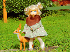 Wandering With A Friend (Forest_Daughter) Tags: fairyland littlefee ante bjd balljointed doll