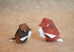 【Origami】Little Sparrow (Lonely-Shiba) Tags: origami original bird 折り紙