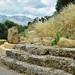 Circular Building of Sparta