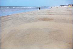 """""""Grain"""" (de sable evidemment) Sur la plage de Knokke, Belgium (claude lina) Tags: claudelina belgique belgium belgië knokke knokkeheist mer sea noordzee merdunord plage beach"""