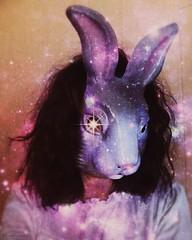 Seeing It (Roxanne Handelong/These Corridors) Tags: photo photography bunny rabbit mask bunnymask rabbitmask me selfie
